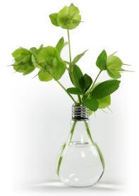 greenbulb - vase in glühlampenform